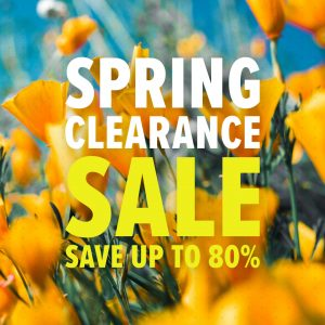 Spring Clearance Sale Graphic 3 (1080x1080)